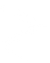 RG Media Logo Kopie